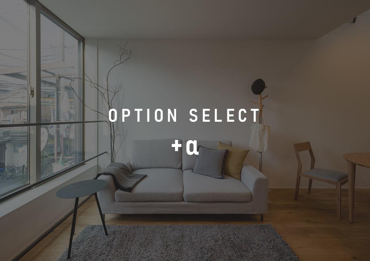 option-select@2x